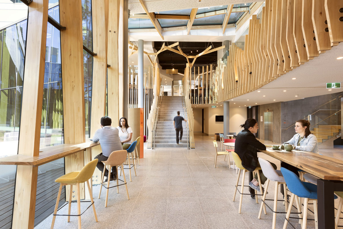 Interior of Orygen Youth Health with exposed timber beams by Vicbeam