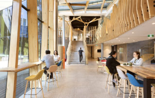 Interior of Orygen Youth Health with exposed timber Glulam beams by Vicbeam