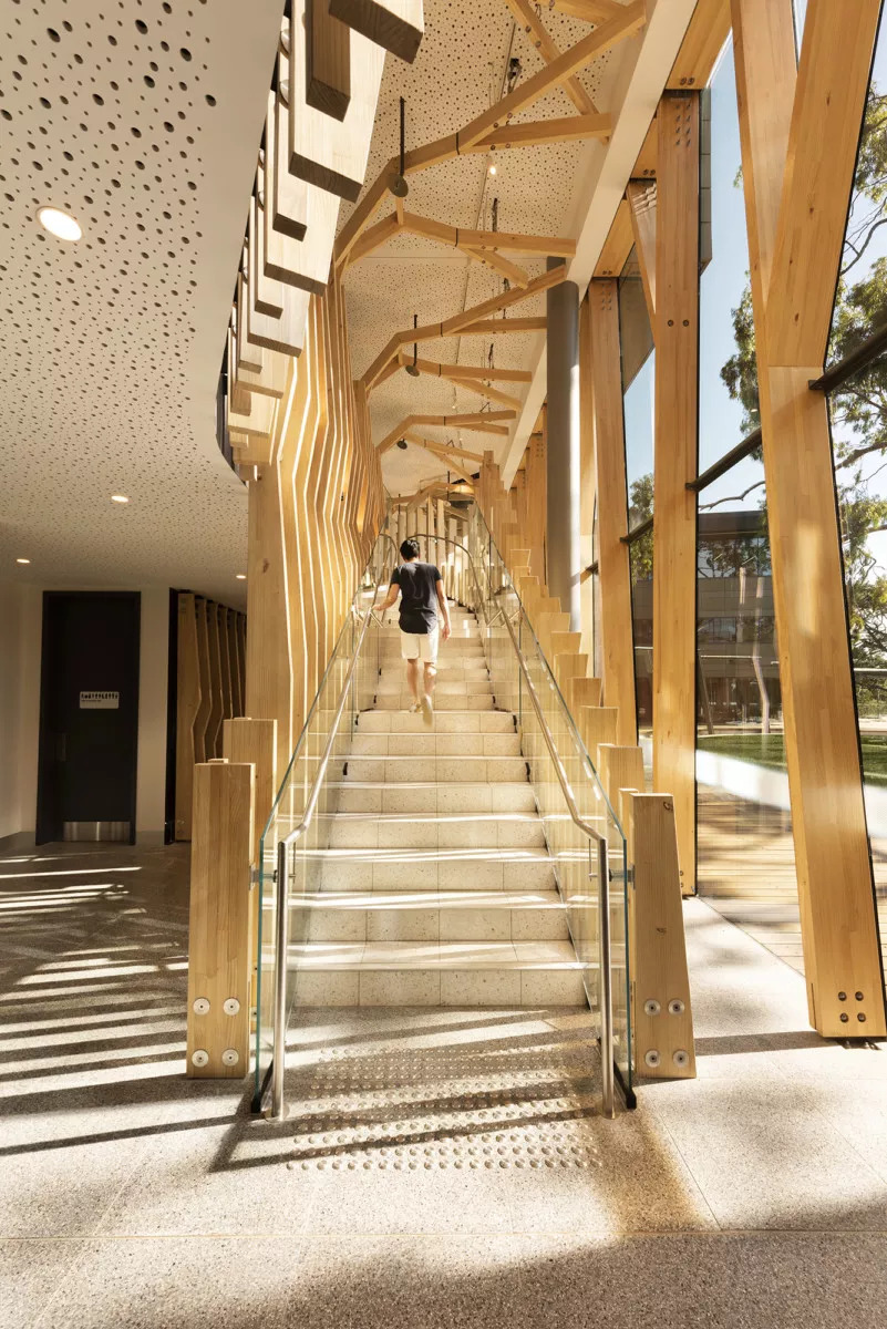 Mass timber stairway with tree-like supports