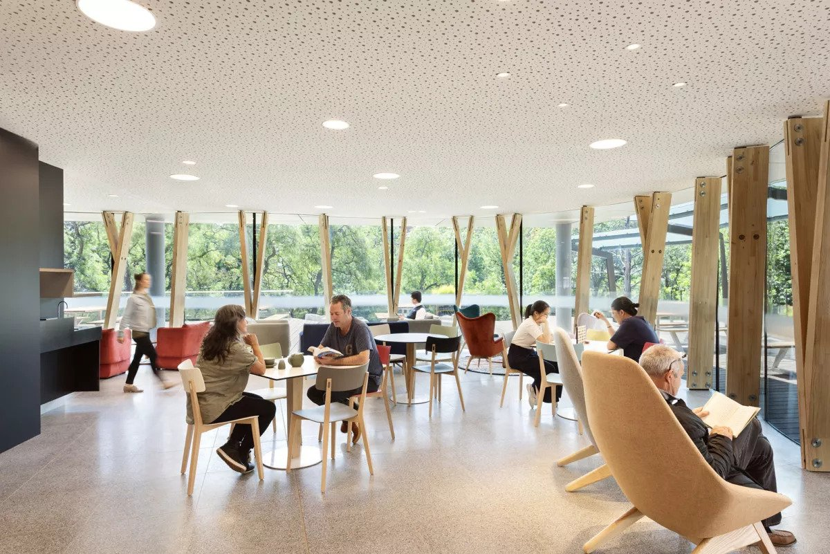 Bright communal space with tables chairs and wide window with Glulam beam supports