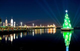 Large floating Christmas tree lit up at night in Geelong, engineering design by Vistek. Engineering art installations of this size is a specialised field.