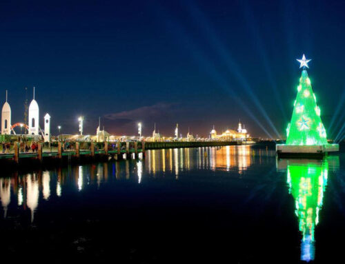 The Geelong floating Christmas tree returns